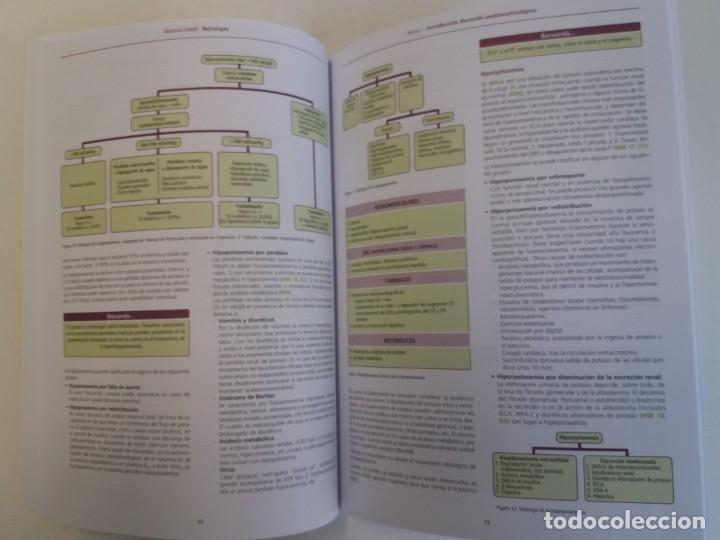 Libros: NEFROLOGIA ESTUPENDO MANUAL COMPENDIO DE TODA LA NEFROLOGIA NUEVO 2018 MIR - Foto 10 - 224243325