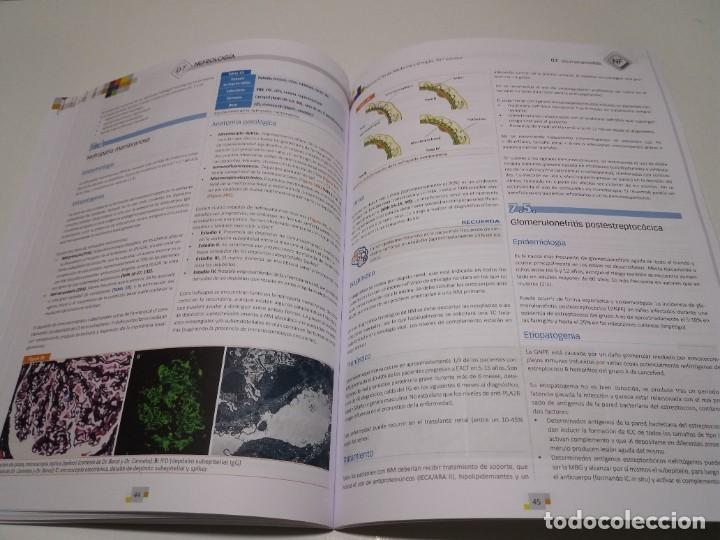 Libros: NEFROLOGIA ESTUPENDO MANUAL COMPENDIO DE TODA LA NEFROLOGIA NUEVO 2018 MIR - Foto 20 - 227444195