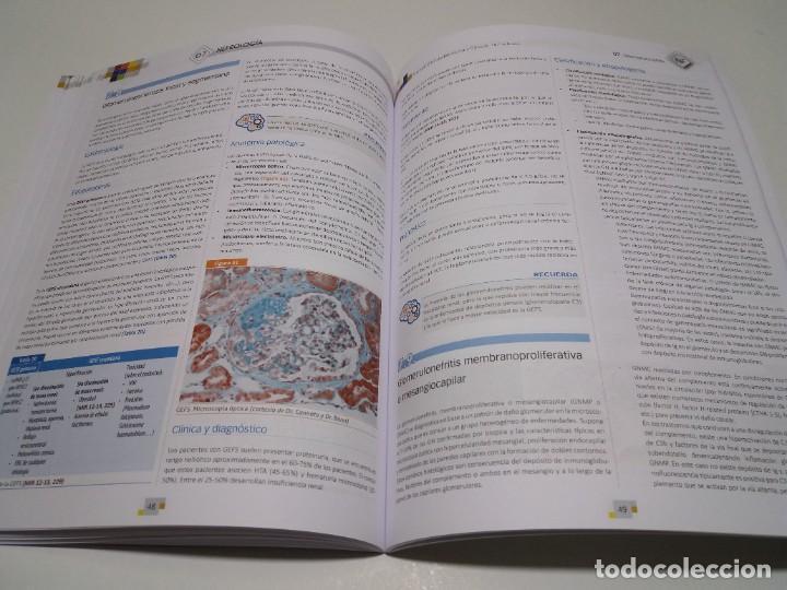 Libros: NEFROLOGIA ESTUPENDO MANUAL COMPENDIO DE TODA LA NEFROLOGIA NUEVO 2018 MIR - Foto 22 - 227444195