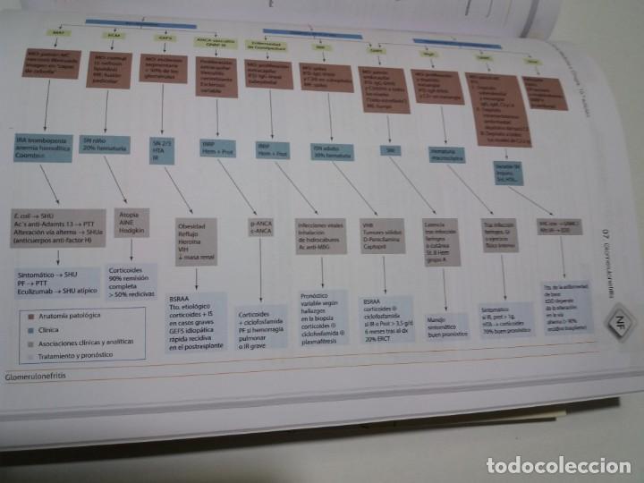Libros: NEFROLOGIA ESTUPENDO MANUAL COMPENDIO DE TODA LA NEFROLOGIA NUEVO 2018 MIR - Foto 25 - 227444195
