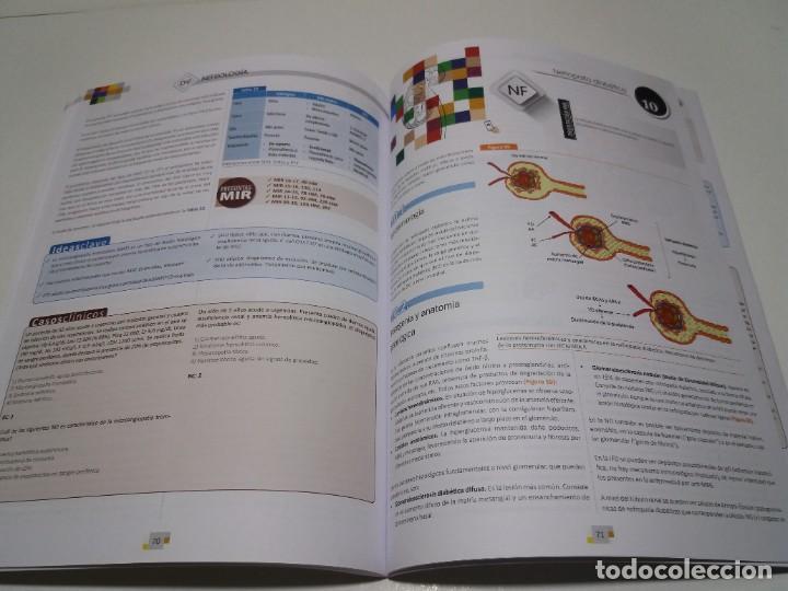 Libros: NEFROLOGIA ESTUPENDO MANUAL COMPENDIO DE TODA LA NEFROLOGIA NUEVO 2018 MIR - Foto 32 - 227444195
