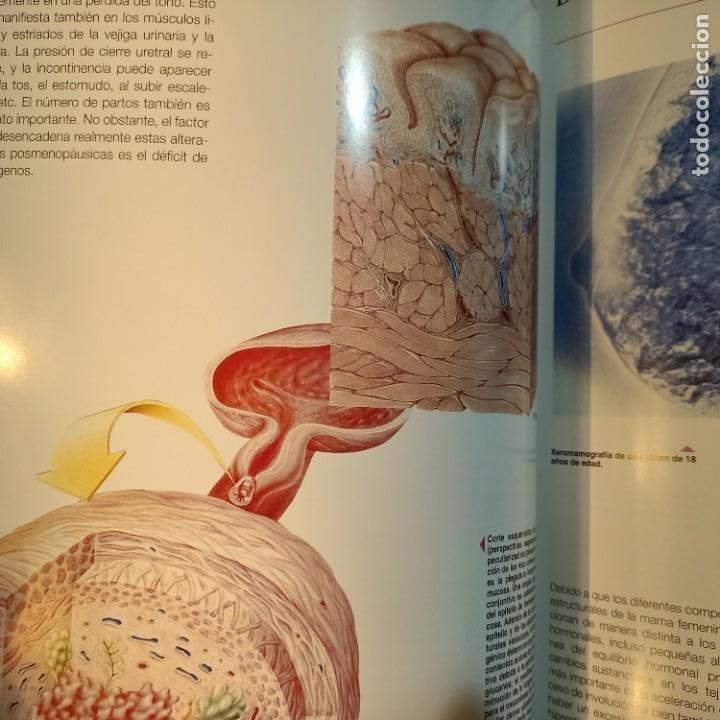 Libros: EXEMPLA ENDOCRINOLOGICA, V.V.A.A., 3 VOLUMENES, MEDICINA / MEDICINE, SCHERING, AULA MEDICA, 1997 - Foto 3 - 243839855