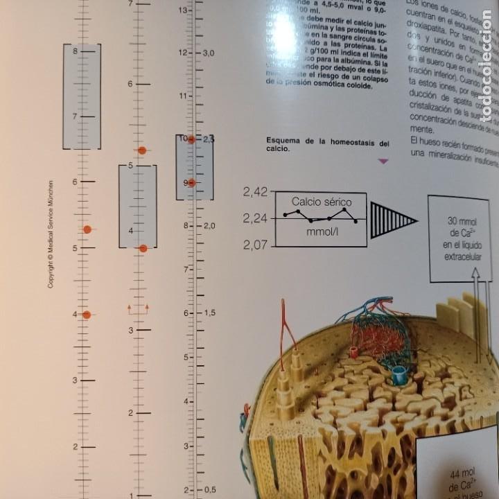 Libros: EXEMPLA ENDOCRINOLOGICA, V.V.A.A., 3 VOLUMENES, MEDICINA / MEDICINE, SCHERING, AULA MEDICA, 1997 - Foto 4 - 243839855
