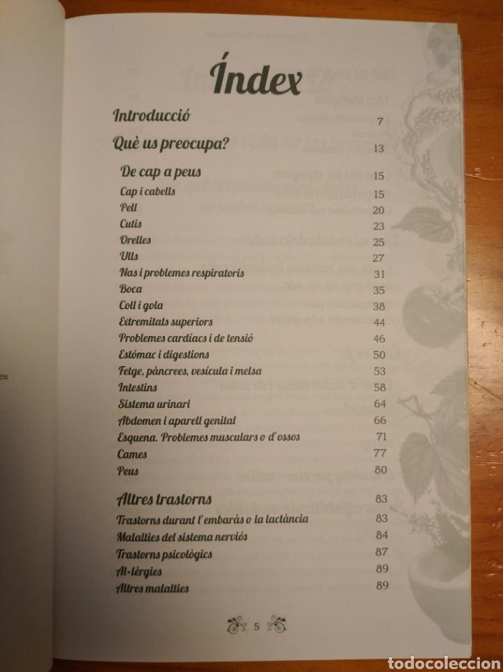 Libros: Els remeis den Rami Remeis. Consells de salut natural. Albert Rami. - Foto 2 - 252022695