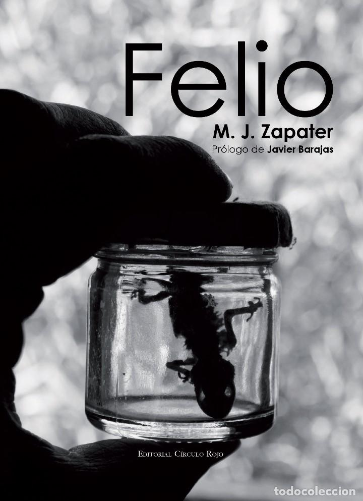 Libros: Ocho onzas de gresite chocolate y la novela negra de M. J. Zapater - Foto 11 - 159655282