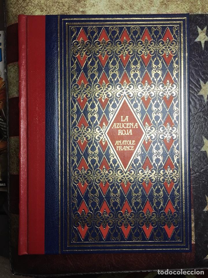 LA AZUCENA ROJA (Libros Nuevos - Literatura - Narrativa - Novela Romántica)