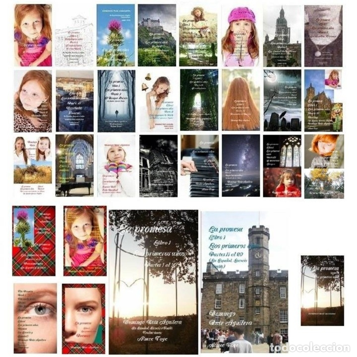 LA PROMESA - LIBRO 1 - PARTES 1 A LA 24 Y EXTRAS ---VER DETALLES (Libros Nuevos - Literatura - Narrativa - Novela Romántica)