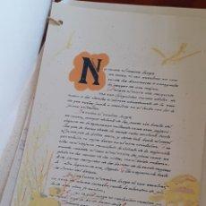 Libros: MANUSCRITO SERIGRAFIADO SERIE LIMITADA DE 100. Lote 180174010