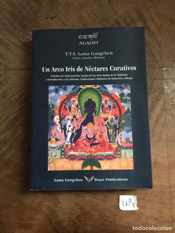 UN ARCO IRIS DE NÉCTARES CURATIVOS (Libros nuevos sin clasificar)