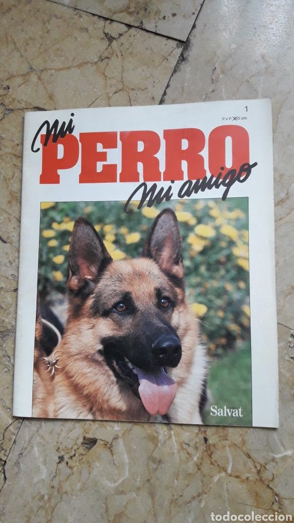 Libros: ENCICLOPEDIA MI PERRO MI AMIGO - Foto 2 - 192913563