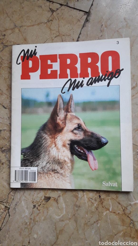 Libros: ENCICLOPEDIA MI PERRO MI AMIGO - Foto 4 - 192913563