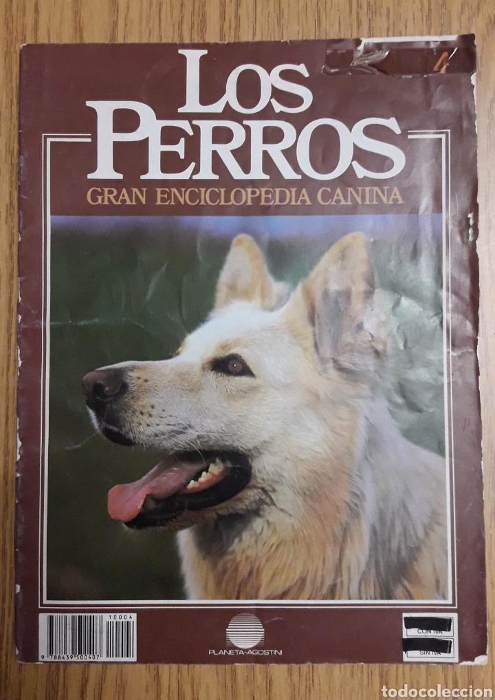 Libros: ENCICLOPEDIA MI PERRO MI AMIGO - Foto 6 - 192913563