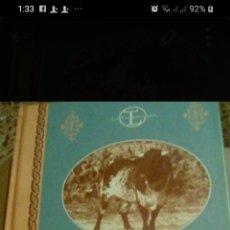 Libros: LIBRO TAURIO, EL TORO BRAVO DE ÁLVARO DOMECQ. Lote 199174907