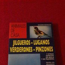 Libros: JILGUEROS-LUGANOS-VERDERONES-PINZONES. LIBRO DE 1996.. Lote 202963628