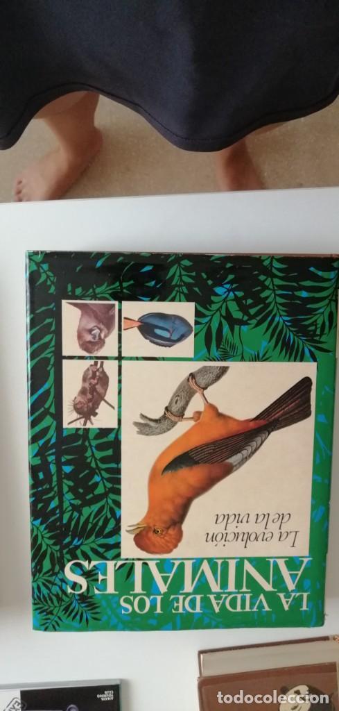 G-33 LIBRO LA VIDA DE LOS ANIMALES LA EVOLUCION DE LA VIDA (Libros nuevos sin clasificar)