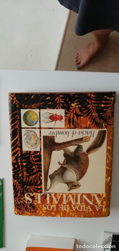 G-33 LIBRO LA VIDA DE LOS ANIMALES HACIE EL HOMBRE (Libros nuevos sin clasificar)
