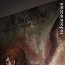 Libros: COLECCIÓN BANCO HISPANO AMERICANO DÍAZ PADRÓN, JUNQUERAS MATÓ, FRANCESC FONTBONA, CALVO-SERRALLER. Lote 219716463
