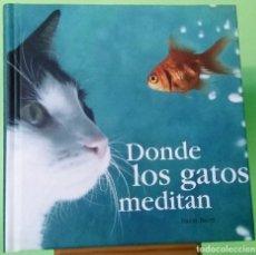 Libros: DONDE LOS GATOS MEDITAN - LIBRO ILUSTRADO - PEARSON - IDEAL PARA REGALO - NUEVO. Lote 228191245