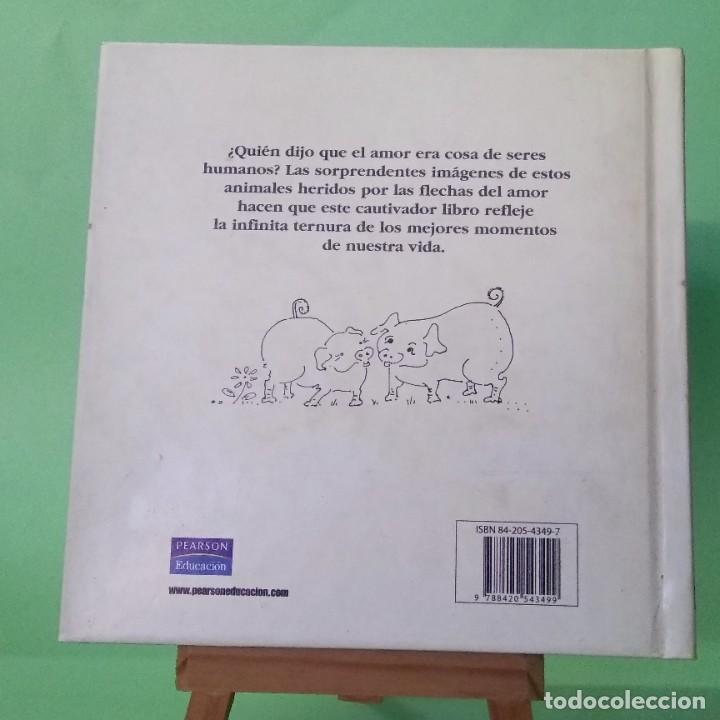 Libros: SOLO TENGO OJOS PARA TI - LIBRO ILUSTRADO - PEARSON - IDEAL PARA REGALO - NUEVO - Foto 2 - 228192215