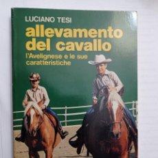 Libros: ALLEVAMENTO DEL CAVALLO. L'AVELIGNESE E LE SUE CARATTERISTICHE DI LUCIANO TESI. Lote 232016165