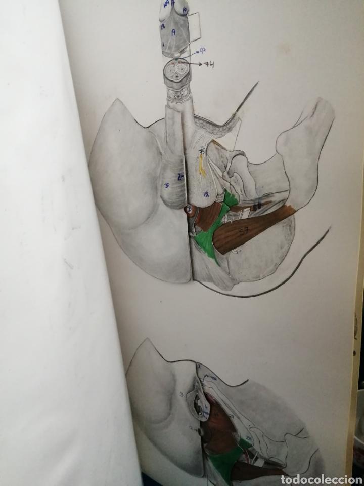Libros: RECONSTRUCCIONES HUMANAS POR PLANOS DE DISECCIÓN, EXPAXS, 2007,J.M.SMITH-AGREDA,ISBN 84-7179-319-5. - Foto 18 - 245736500