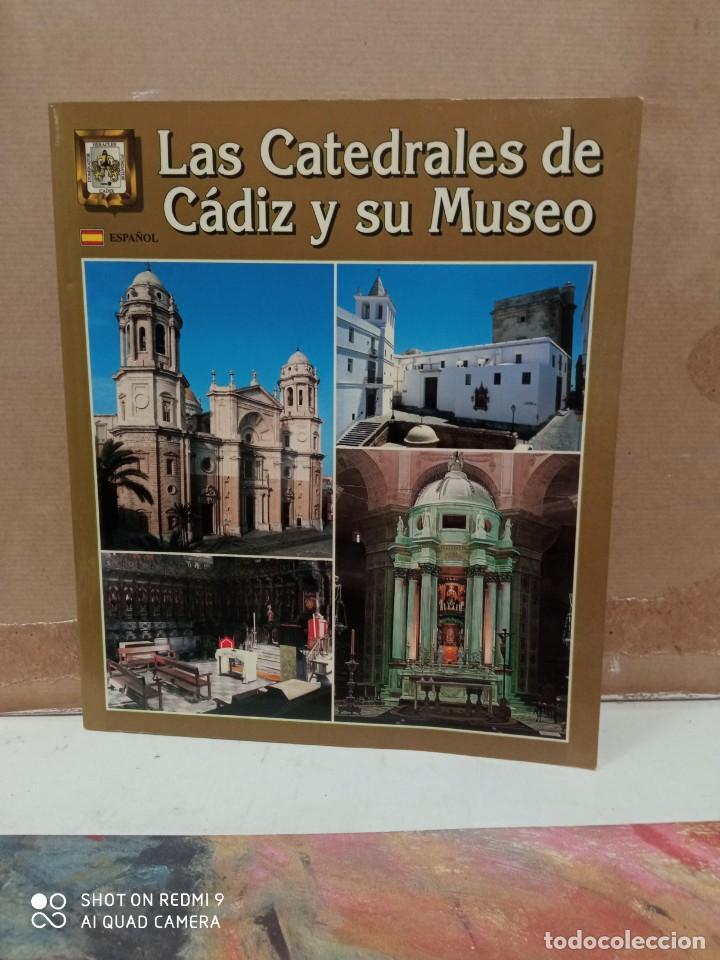 LAS CATEDRALES DE CADIZ Y SU MUSEO (Libros nuevos sin clasificar)