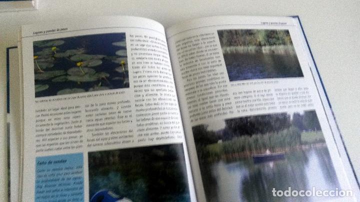 Libros: LIBRO: EL ABC DE LA PESCA CON CAÑA. - Foto 2 - 78901005