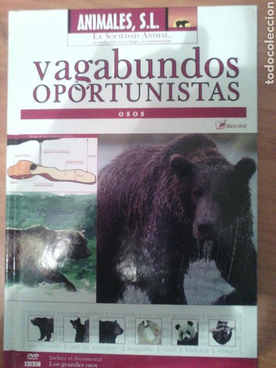 ANIMALES SL. VAGABUNDOS OPORTUNISTA OSOS (Libros Nuevos - Ocio - Otros)