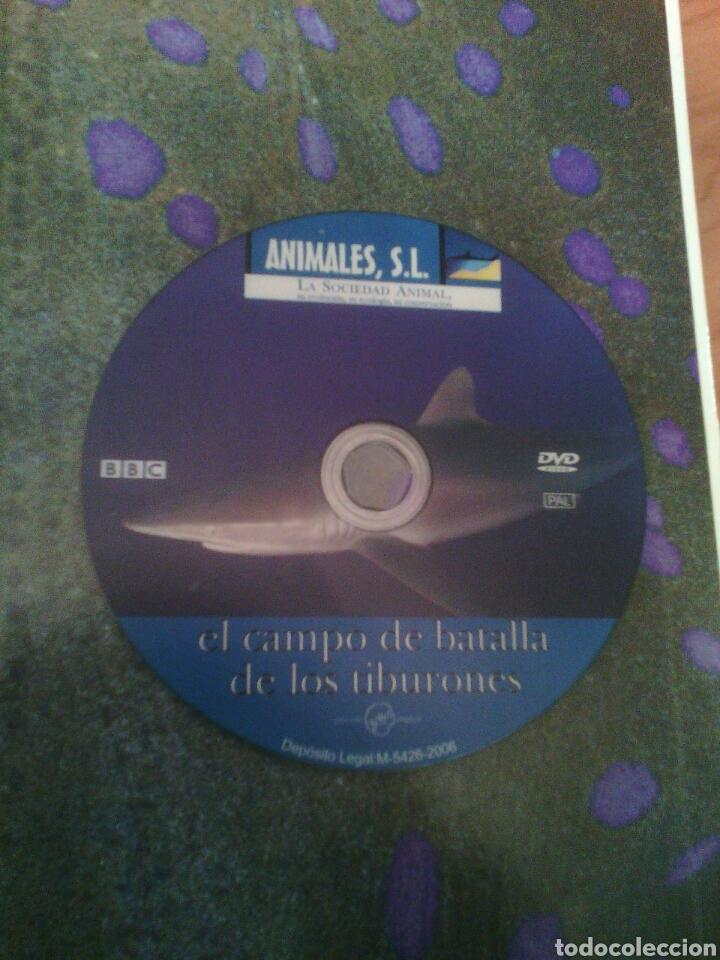Libros: Animales s.l. peligro en el océano tiburones y rayas - Foto 2 - 81209471