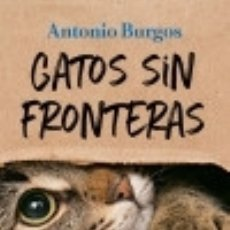 Libros: GATOS SIN FRONTERAS. Lote 137417961