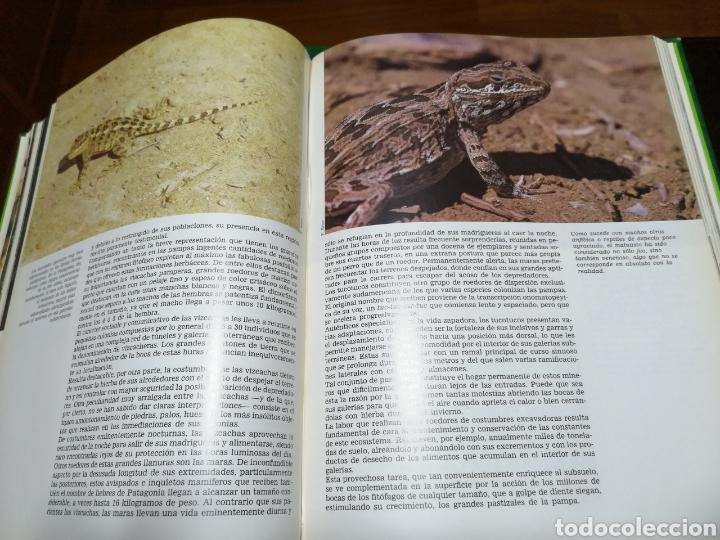 Libros: LA AVENTURA DE LA VIDA , CRÓNICA DE VIAJES DE FÉLIX RODRÍGUEZ DE LA FUENTE - Foto 5 - 153714241