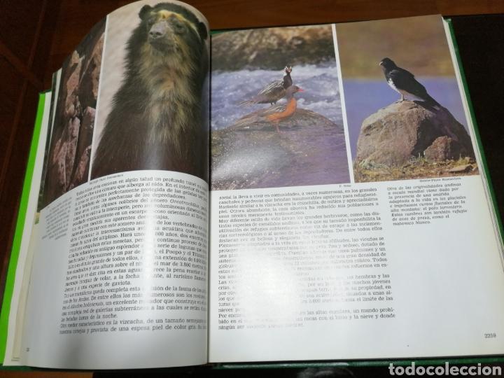 Libros: LA AVENTURA DE LA VIDA , CRÓNICA DE VIAJES DE FÉLIX RODRÍGUEZ DE LA FUENTE - Foto 6 - 153714241