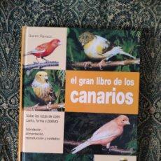 Libros: GIANNI RAVAZZI, EL GRAN LIBRO DE LOS CANARIOS (BARCELONA, DE VECCHI, 2004). Lote 176260868