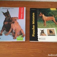 Libros: LIBROS SOBRE LOS PERROS PINSCHER MINIATURA. Lote 181480925