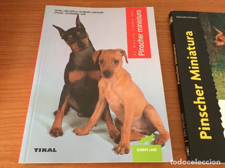 Libros: Libros sobre los perros Pinscher Miniatura - Foto 2 - 181480925