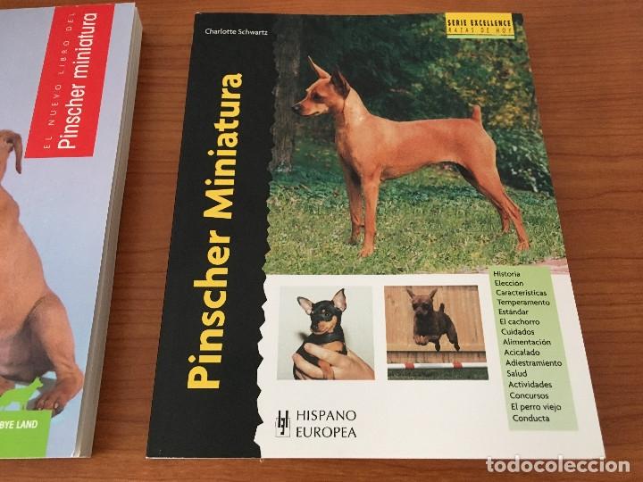 Libros: Libros sobre los perros Pinscher Miniatura - Foto 3 - 181480925