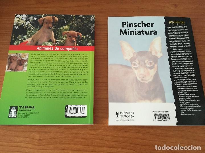 Libros: Libros sobre los perros Pinscher Miniatura - Foto 4 - 181480925