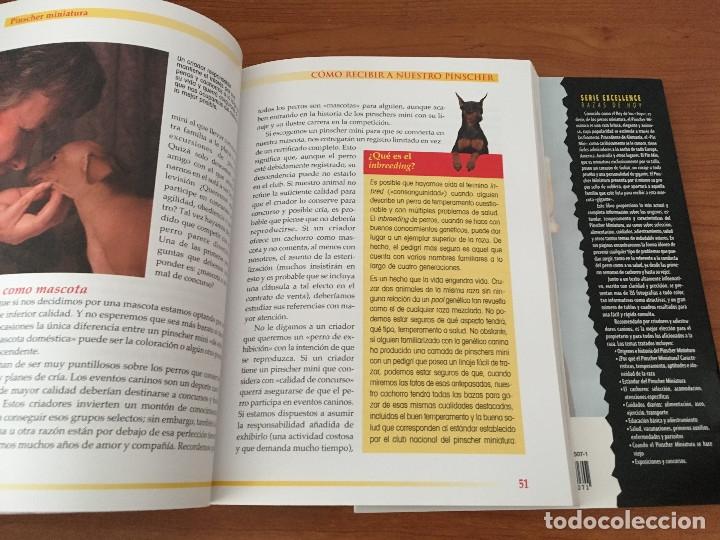 Libros: Libros sobre los perros Pinscher Miniatura - Foto 5 - 181480925