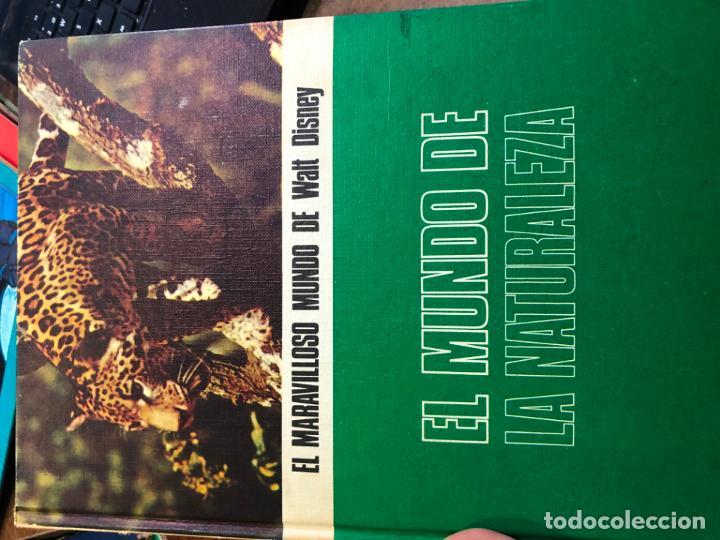 Libros: ANTIGUA COLECCION EL MARAVILLOSO MUNDO DE WALT DISNEY - Foto 4 - 189418841