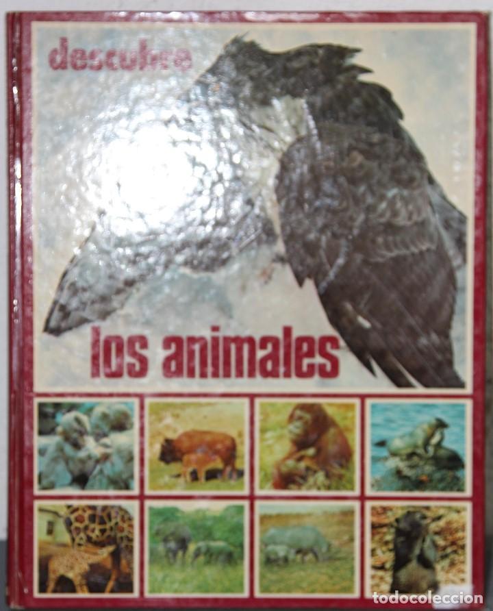 DESCUBRE LOS ANIMALES (Libros Nuevos - Ocio - Otros)