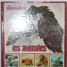 Libros: DESCUBRE LOS ANIMALES. Lote 200398635