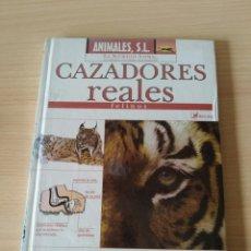 Libros: CAZADORES REALES FELINOS. NUEVO. LIBRO+DVD. Lote 243401330