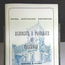 Libros: RINCONES Y PAISAJES DE PALENCIA. Nº 2. L. DOMINGUEZ CARRILLO. IMP. LIFER. 1982.. Lote 100129319
