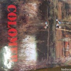 Libros: PINTOR JOSEP COLOMER. Lote 122114376