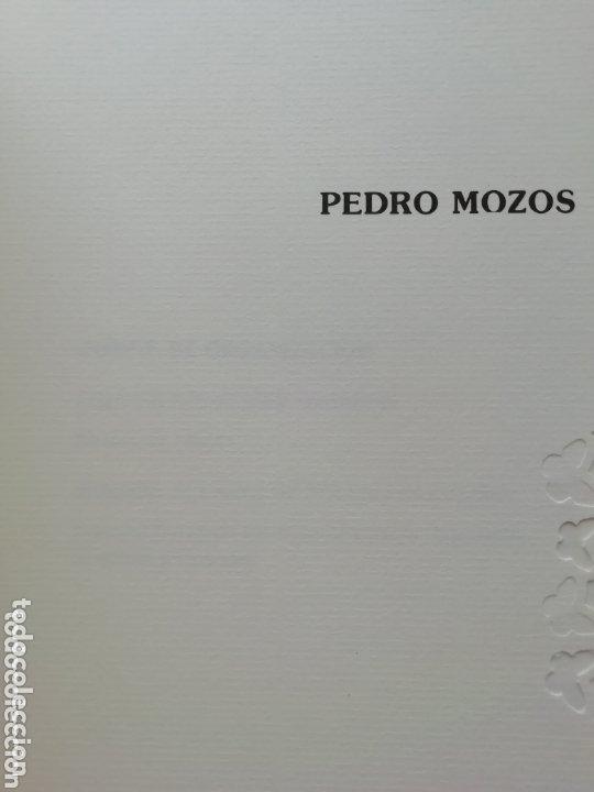 Libros: Pedro mozos catálogo de la exposición Conde Duque, 330 pag. y litografia firmada y enmarcada. - Foto 3 - 173505752