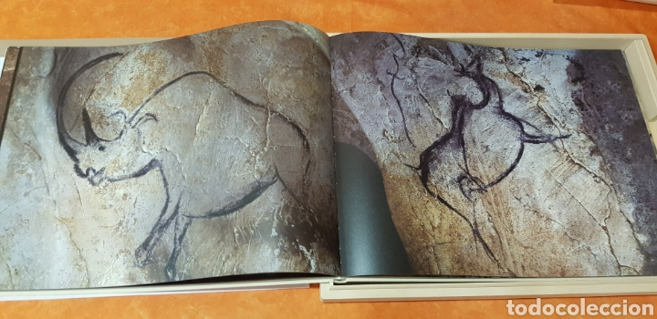 Libros: Miquel Barceló. edicion limitada. firmada a lapiz por miquel barcelò.Cahier de felins.lámina - Foto 7 - 175193148