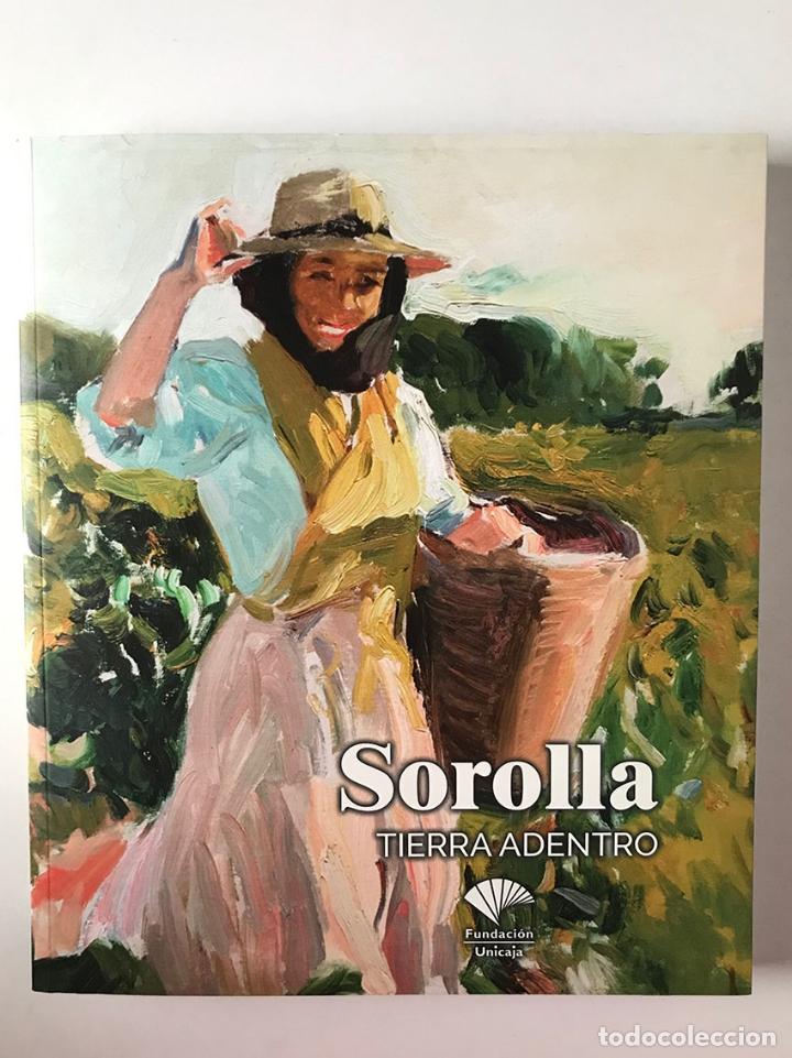 SOROLLA TIERRA ADENTRO. CATÁLOGO. (Libros Nuevos - Bellas Artes, ocio y coleccionismo - Pintura)