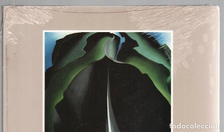 Libros: GEORGIA O´KEEFE NATURALEZAS ÍNTIMAS CATÁLOGO EXPOSICIÓN FUNDAC. JUAN MARCH 2002 PINTURA PLASTIFICADO - Foto 3 - 186071928