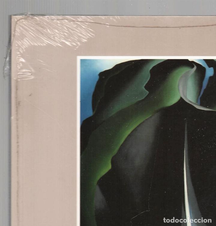 Libros: GEORGIA O´KEEFE NATURALEZAS ÍNTIMAS CATÁLOGO EXPOSICIÓN FUNDAC. JUAN MARCH 2002 PINTURA PLASTIFICADO - Foto 4 - 186071928