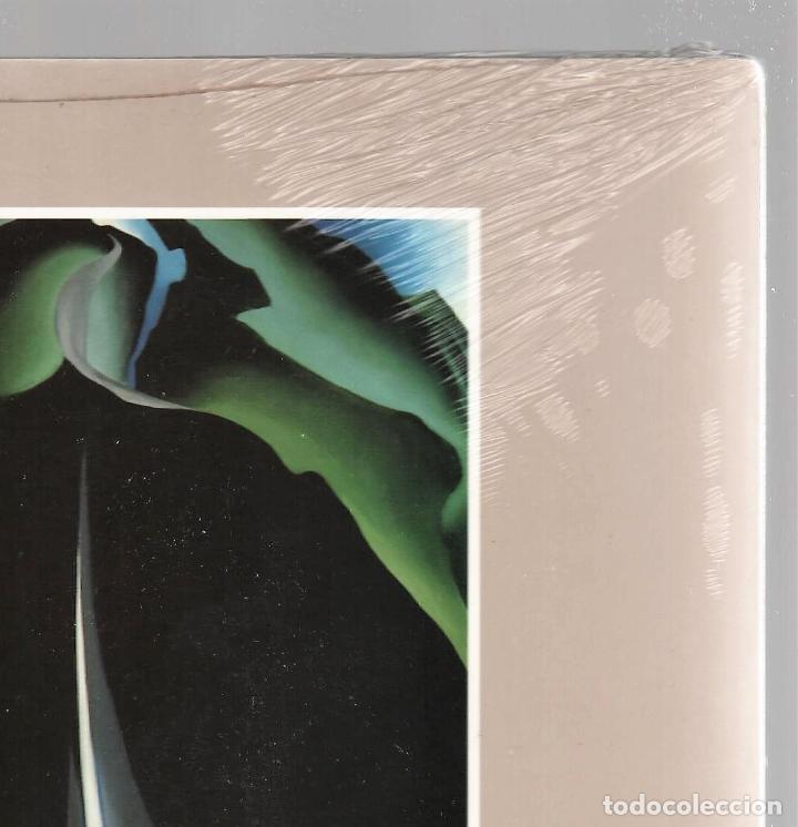 Libros: GEORGIA O´KEEFE NATURALEZAS ÍNTIMAS CATÁLOGO EXPOSICIÓN FUNDAC. JUAN MARCH 2002 PINTURA PLASTIFICADO - Foto 8 - 186071928